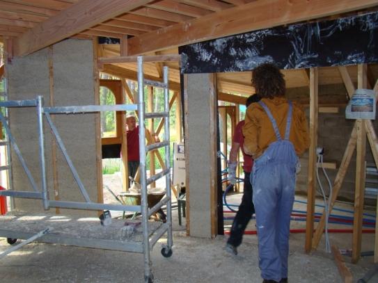 DSC02725 - 2017-05-22, Inside wall growing